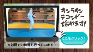 オンライン格闘技を始めました